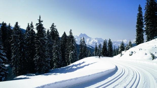 auto-weg-winterbanden-noodzakelijk