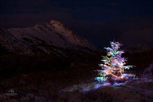 Wintersporten met kerst: dat moet je een keer gedaan hebben