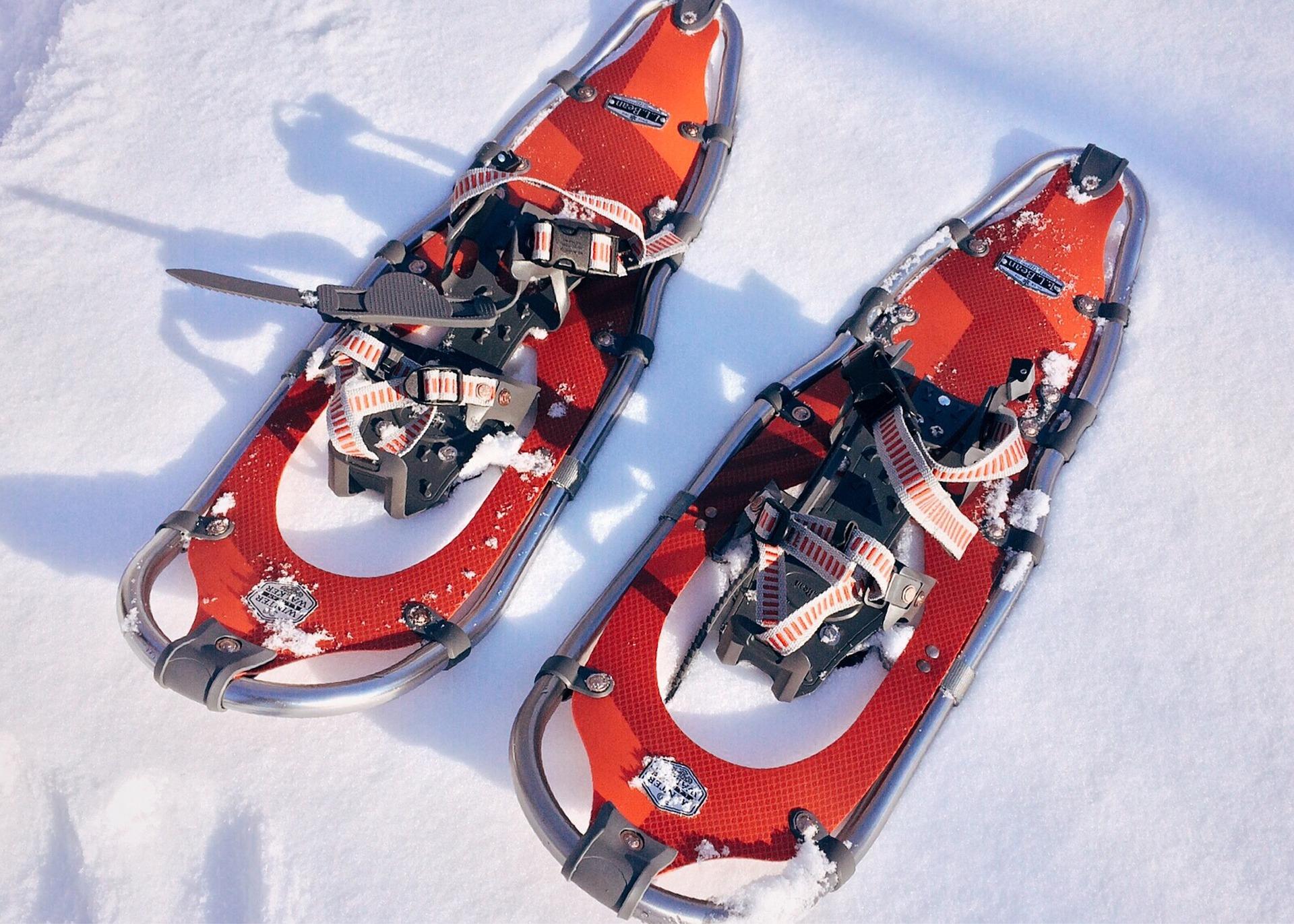 De sneeuwschoenen die je draagt tijdens een sneeuwschoenwandeling